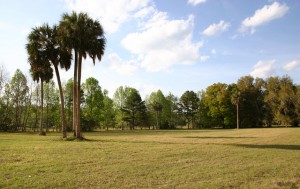 Exploring Fair Oaks - Fair Oaks Florida Ranch 1