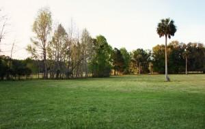 Exploring Fair Oaks - Fair Oaks Florida Ranch 4