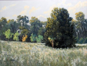 Field II Afternoon Light - Linda Blondheim
