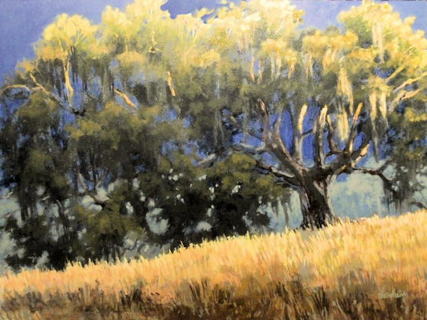 Live Oak Light – Linda Blondheim