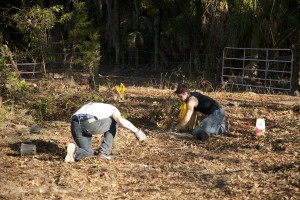 February Tree Planting at Fair Oaks - 12