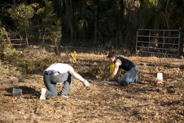 february-tree-planting-012