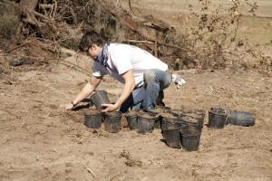 February Tree Planting at Fair Oaks - 15
