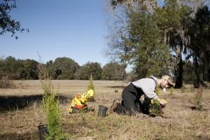February Tree Planting at Fair Oaks - 28