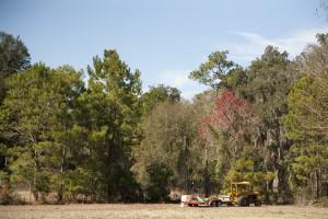 February Tree Planting at Fair Oaks - 31