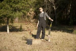 February Tree Planting at Fair Oaks - 33