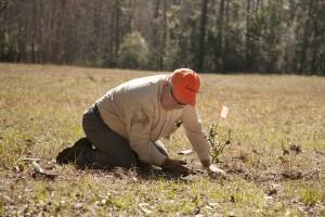 February Tree Planting at Fair Oaks - 37