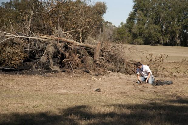 february-tree-planting-068