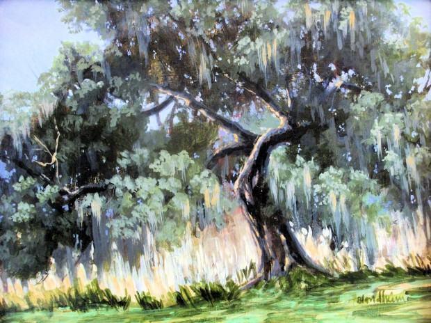 Live Oak – Linda Blondheim