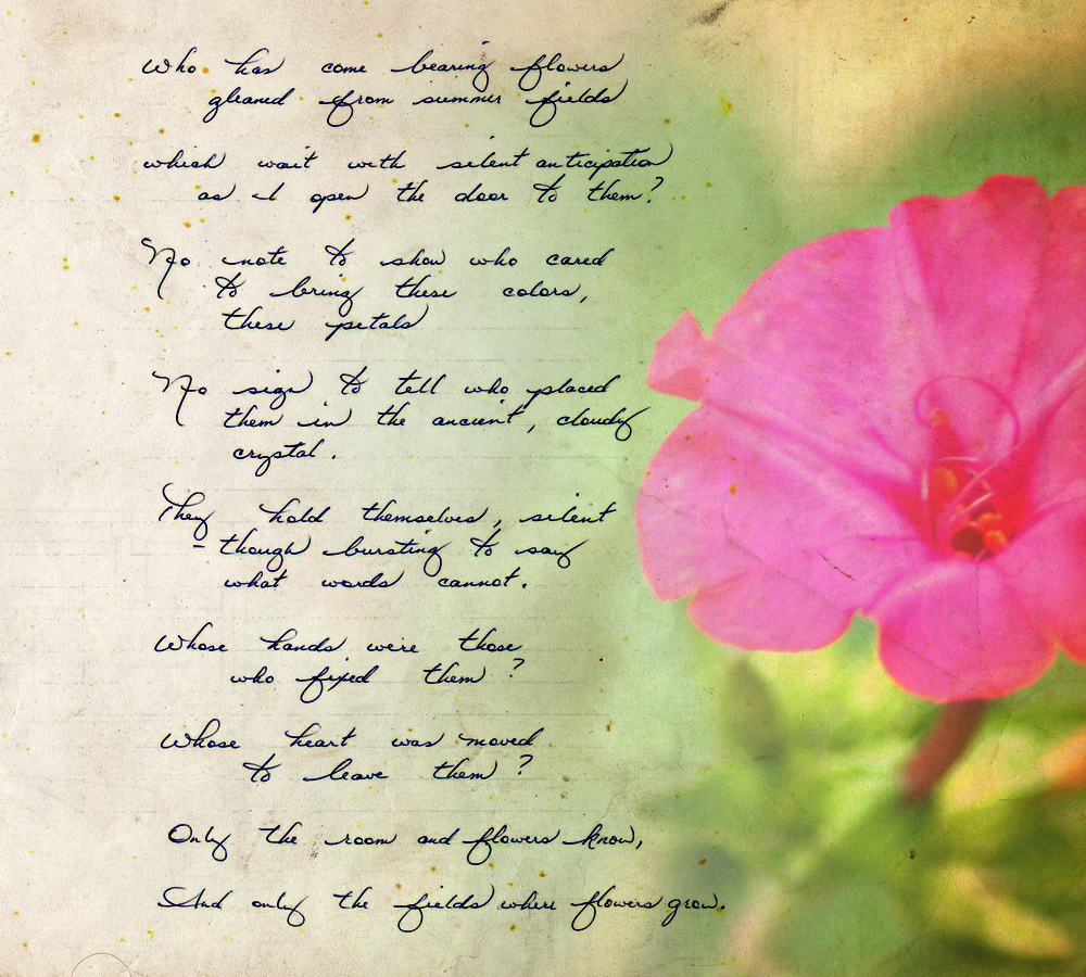 Uncategorized Flower Poem 28 flowers with poems flower poem by trueheart222 on cinquain about images