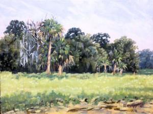 Rye Field Palms - Linda Blondheim