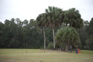 Fair Oaks Florida - 2012 Hoedown Gator Wesley Foundation - 017