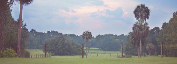Summer at Fair Oaks Ranch 2013