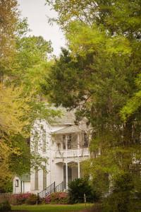 Fair Oaks + Oak Hammocks adventures in Evinston - 02